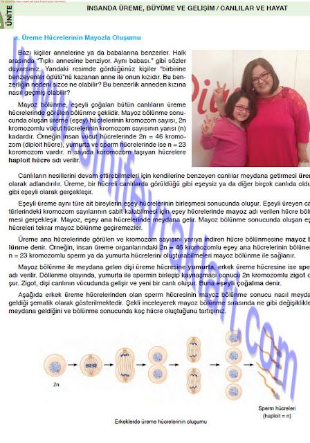 8. Sınıf Fen Bilimleri Ders Kitabı Cevapları Öğün Yayınları Sayfa 25