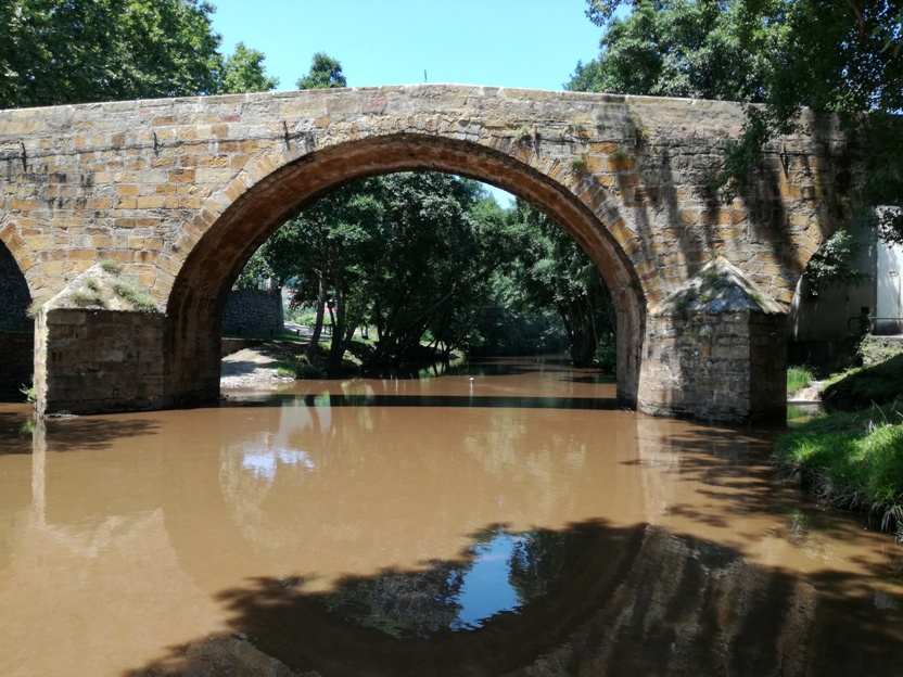 Ponte Joanina de Góis