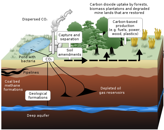 Schematic showing both terrestrial and geological sequestration of carbon dioxide emissions from a coal-fired plant. (Credit: www.neuralenergy.info) Click to enlarge.