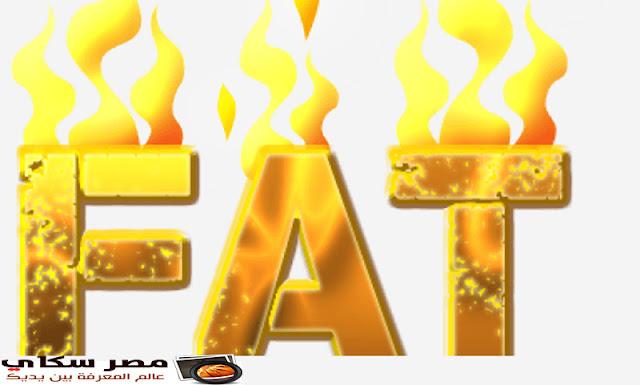7 طرق متبعة لإنقاص الدهون فى طعامك Lose fat