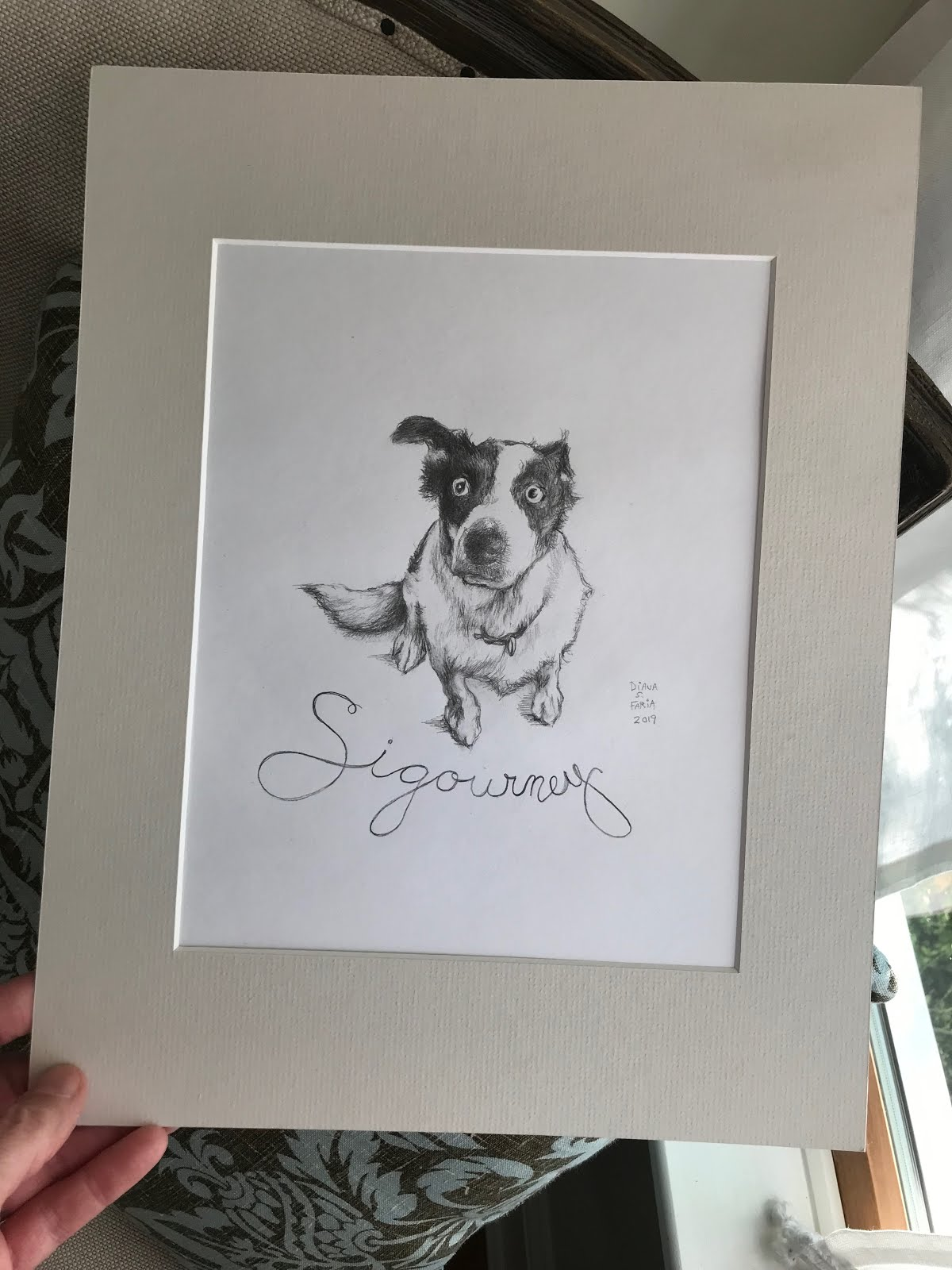 personalized pet portrait Drawings