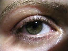 grey eyes amber eyes can t find chrome yellowViridian Green Eyes