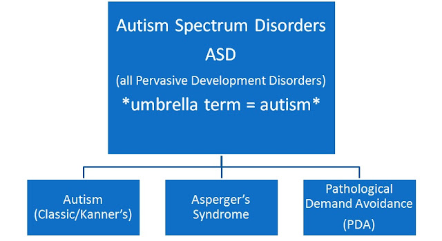 Graph showing where PDA sits relating to ASD