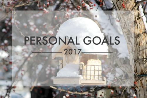 Personal Goals 2017