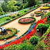 Learn about Government Botanical Garden of India