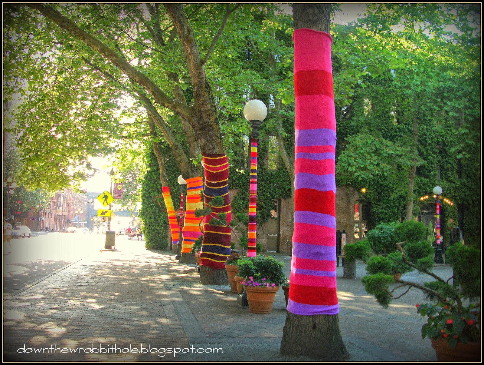 Seattle street art yarn trees Occidental Park