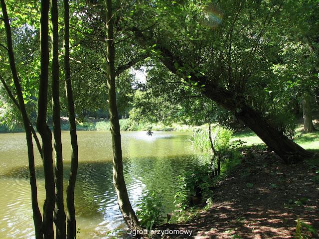 Park Oruński, ogród przydomowy