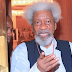 It's wrong to say Nigeria can't be restructured – Soyinka