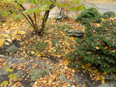 Toronto Fall Cleanup Riverdale Front Garden Before by Paul Jung Gardening Services--a Toronto Organic Gardening Services Company