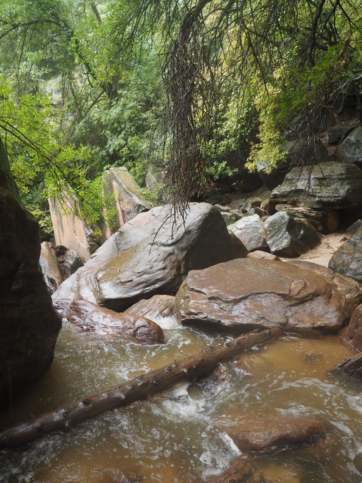 River in Zion National Park, Utah