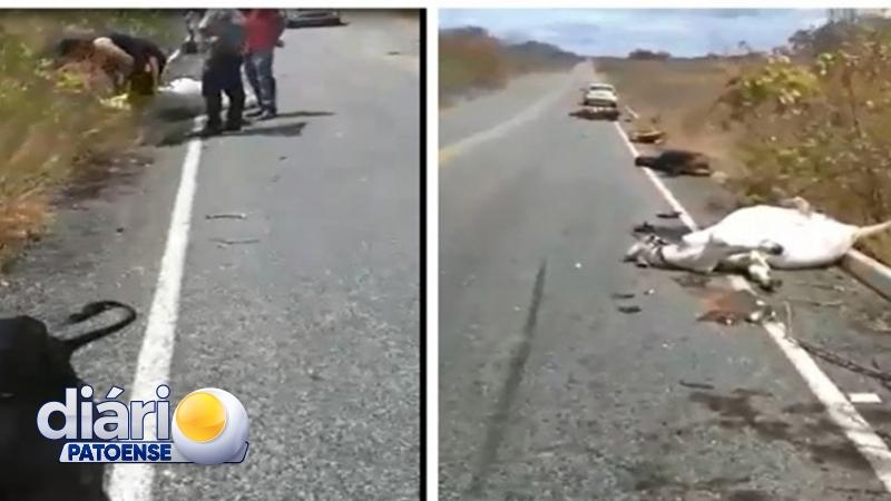 Acidente em PE mata dois motociclistas que voltavam do Patos Moto Fest