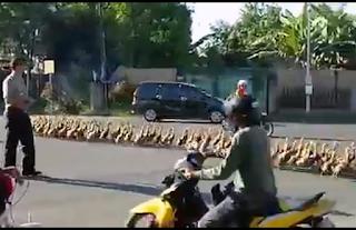 seberangkan-polisi-bebek