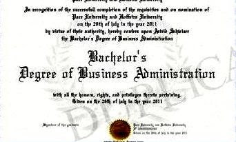 bachelor's degree in business
