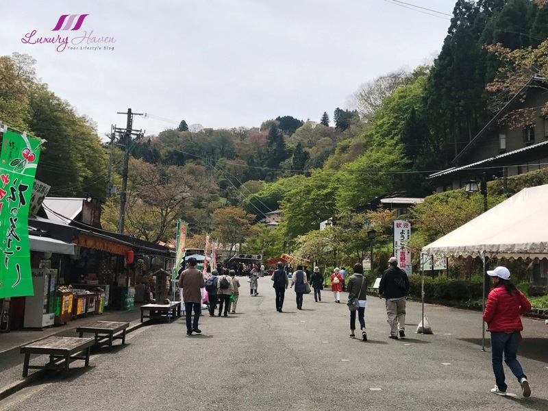 japan tourist attractions yoshino prefecture