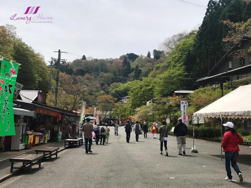 japan tourist attractions yoshino prefecture