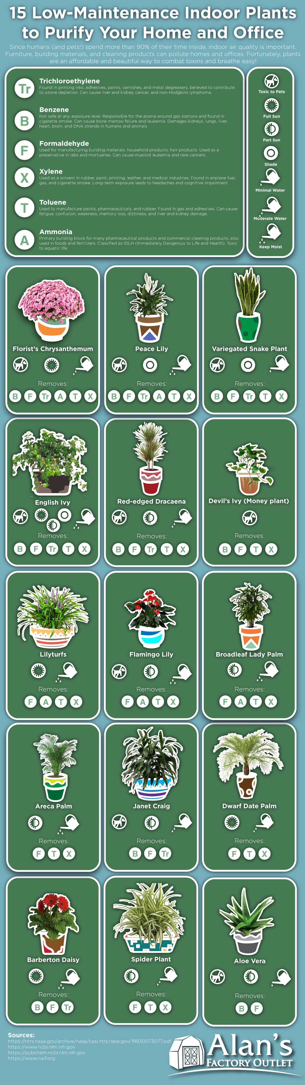 15 Low-Maintenance Indoor Plants to Purify the Air in Your Home or Office #infographic