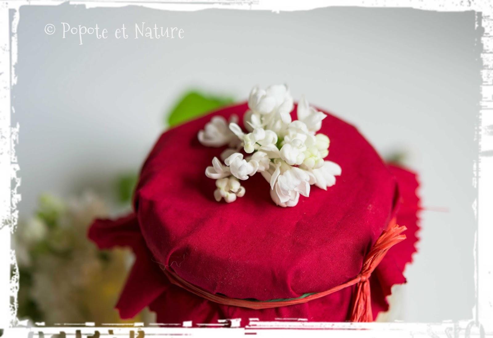 popote et nature du sirop des fleurs printani res du jardin ou comment utiliser le lilas en cuisine. Black Bedroom Furniture Sets. Home Design Ideas