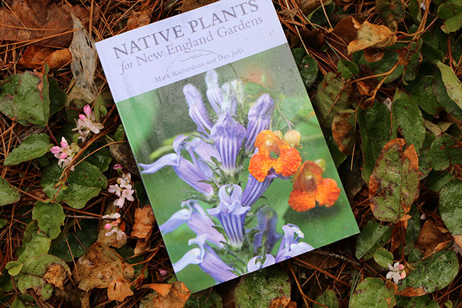 Mayflowers, Preserving Our Native Plants and A New Book Arrives Just In Time