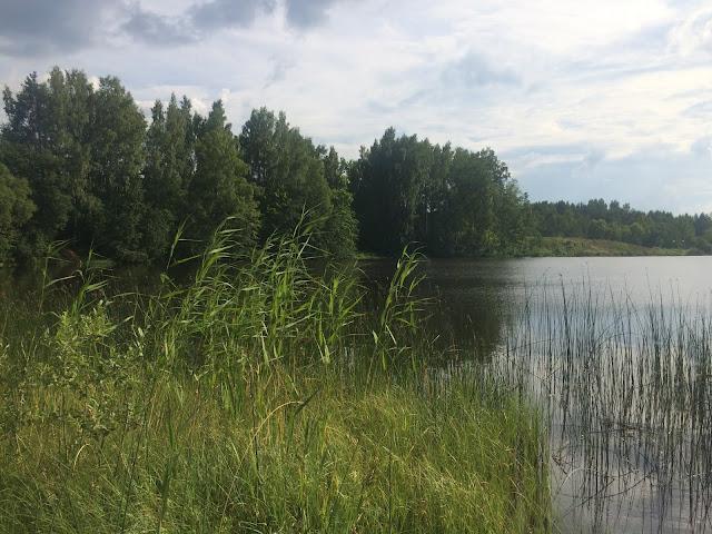 Наша река летом