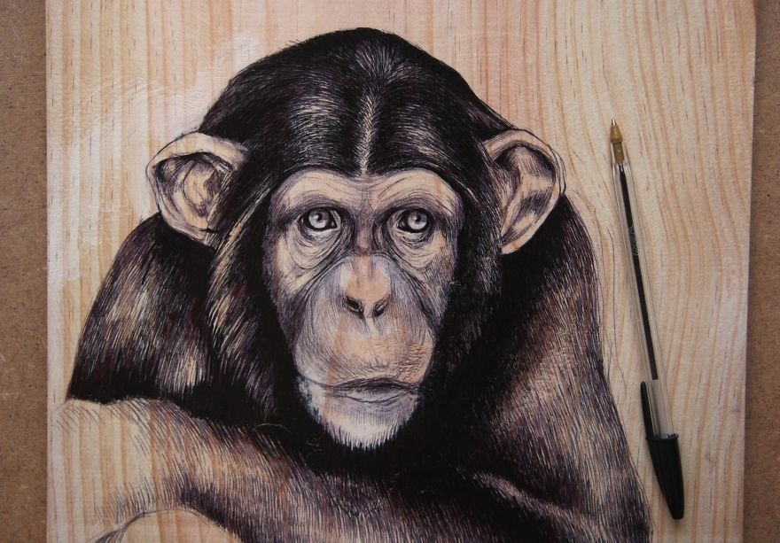 10-Monkey-pen-00-Martina-Billi-Recycled-Wooden-Planks-Used-to-Draw-Animals-www-designstack-co
