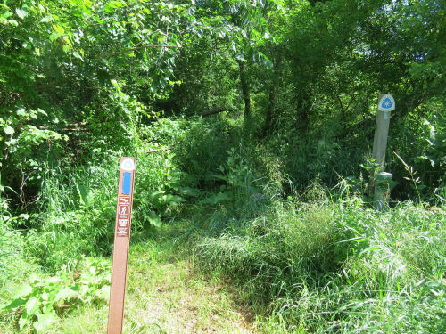 Litchfield Nature Trail