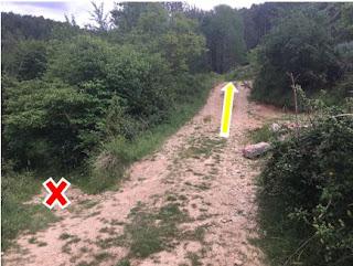 Indicacions cap a la pista forestal
