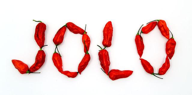Bhut jolokia chilli JOLO