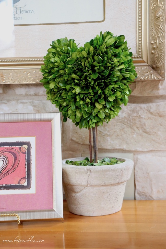 Vintage Valentines display tips with preserved boxwood heart topiary