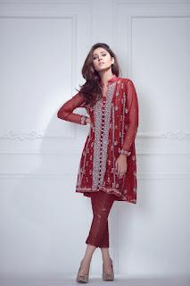 ayesha-somaya-trousseau-women-winter-dresses-collection-2016-17-full-catalog-9