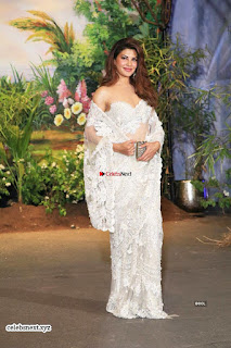Jacqueline Fernandez at Sonam Kapoor Wedding Stunning Beautiful Divas ~ Exclusive