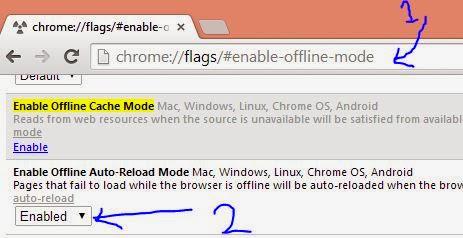 Chrome Browser Offline Webpage setting - NICE INFO