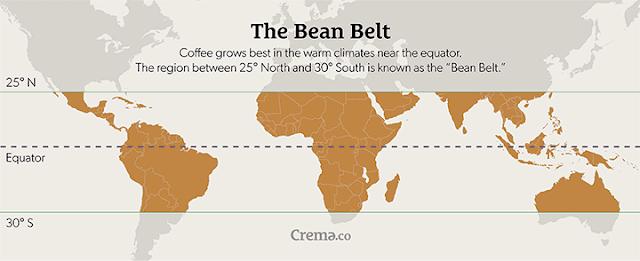 Sabuk kopi dunia.