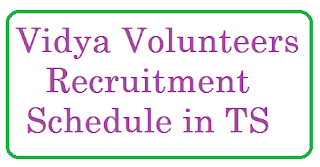 TS School Education Vidhya Volunteer Recruitment