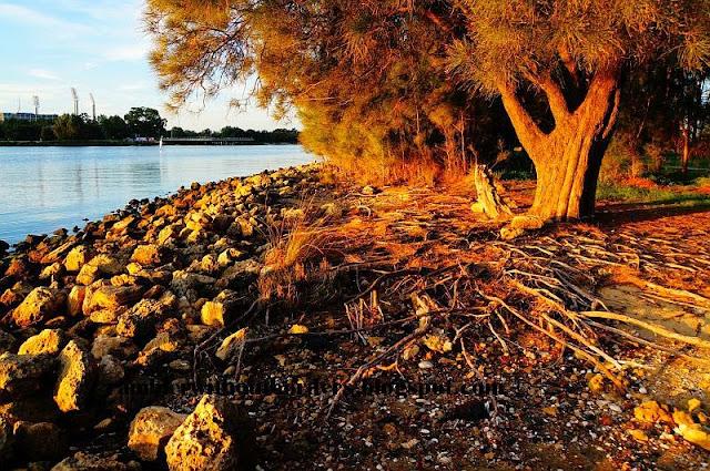 Rocky beach of Heirisson Island, Perth, WA