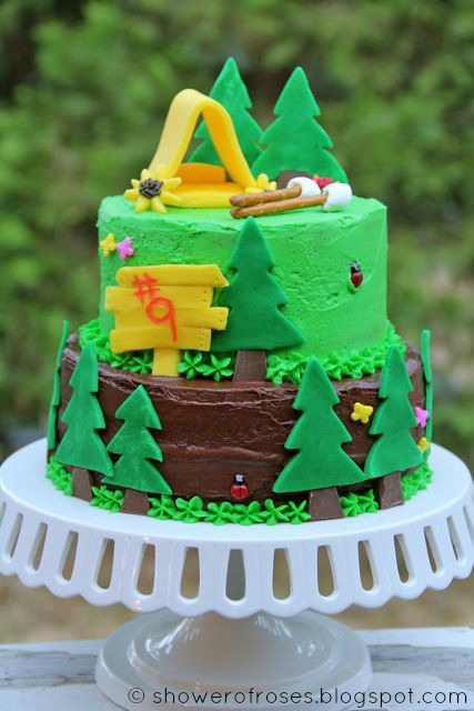 A Camping Themed Birthday Cake