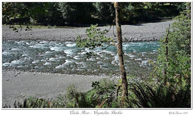 Elwha River: Crystalline Burbles