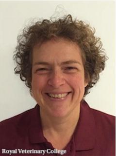 Royal Veterinary College Professor Renate Weller