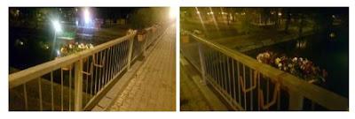 Doi tineri din Portugalia amendati că au aruncat în Bega ghivece cu flori de pe Podul Michelangelo