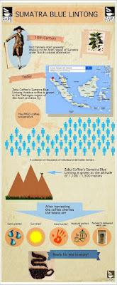 Riwayat Sebiji Kopi Lintong Nihuta Asal Sumatera Menembus Dunia