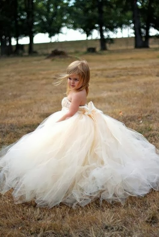 wedding flower girl ideas Tulle A line dress