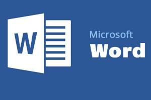 مايكروسوفت وورد