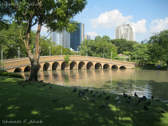 Bridge of Chatuchak Park