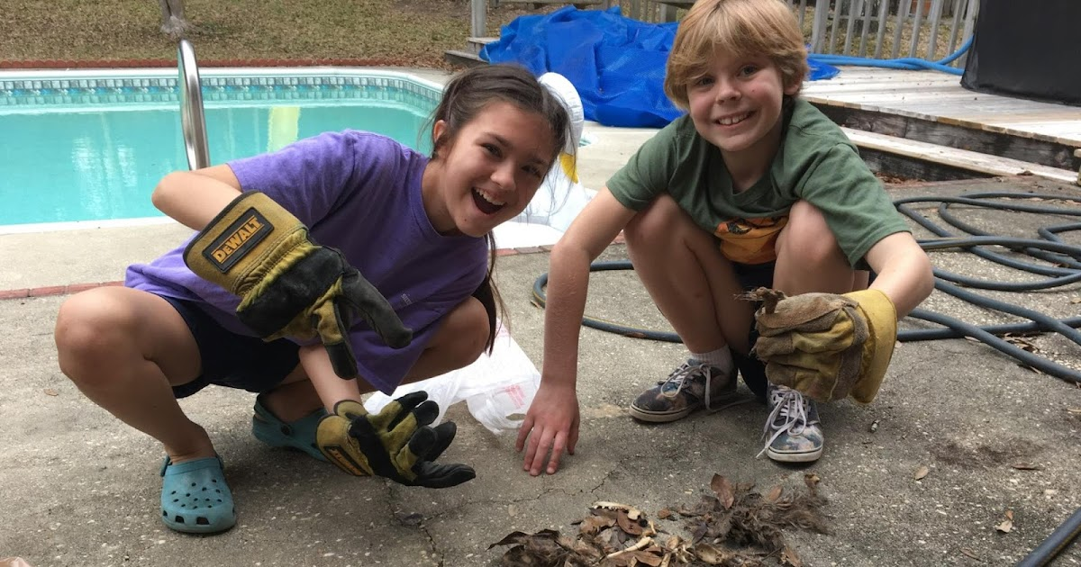 Three Girls, a Dead Raccoon, and My Crockpot: A Photo-Essay