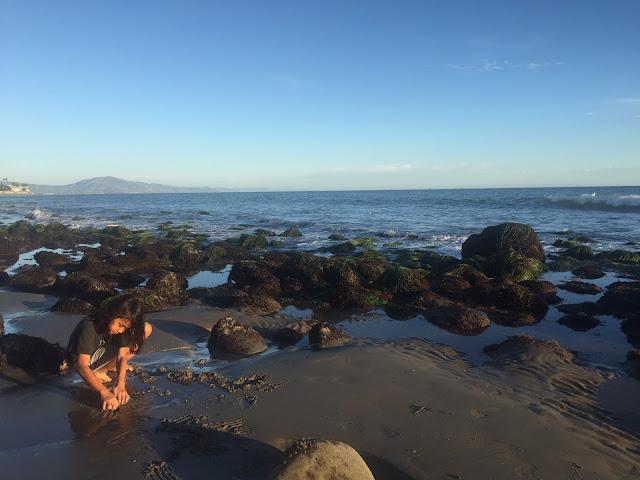 Ziggy-Jo-Butterfly-Beach-California-Zirocksays