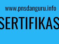 Apa Saja Syarat Sertifikasi Non PNS? Berikut Informasinya