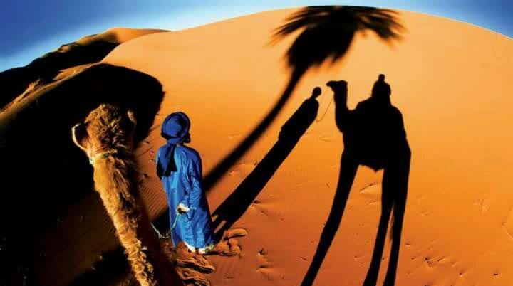 Saat Syafi'i Muda Berfatwa di Hadapan Imam Malik