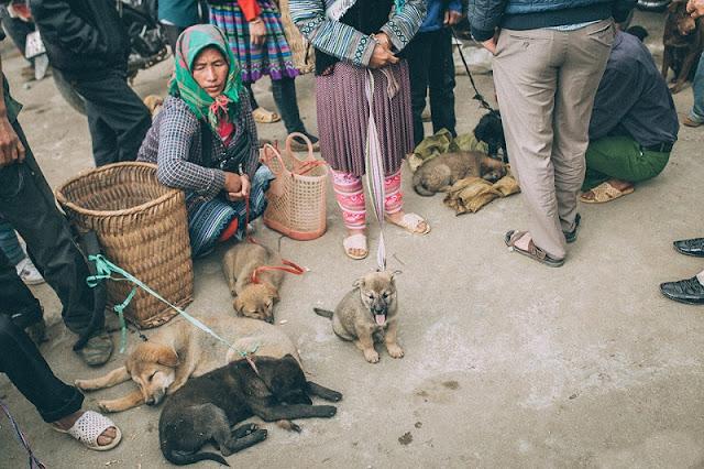 Discover The Unique Culture Of Bac Ha Market 5