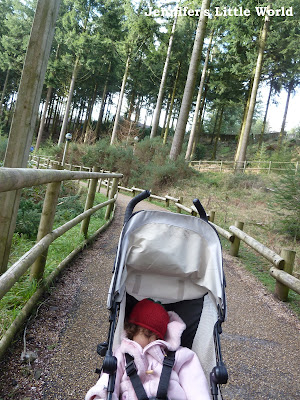 Baby in pushchair at Center Parcs