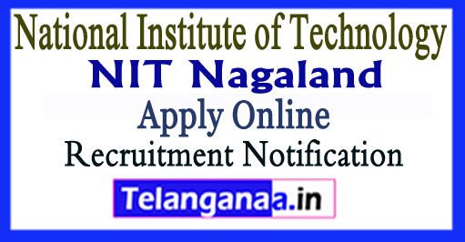 NIT Nagaland National Institute of Technology Recruitment Notification 2017 Apply