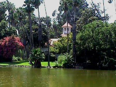 Riosloggers Peacock Garden In Pasadena California In